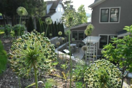Lake Country Garden 4